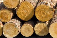 Free Logs Stock Photos - 5328083