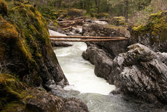 Logs across the gorge. Two logs bridging the wild river from cliff to cliff Royalty Free Stock Images