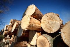 Logs against blue sky Royalty Free Stock Photos