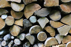 Logs armazenados Fotos de Stock