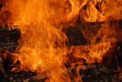 Logs on avfyrar Royaltyfria Bilder
