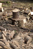 Logs being chopped. Royalty Free Stock Images