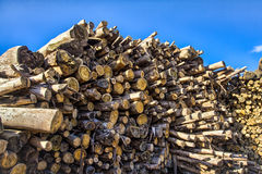 Logs Royalty Free Stock Photos