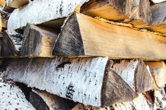 Logs of birch firewood Stock Image