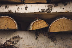 Logs of birch firewood Stock Images