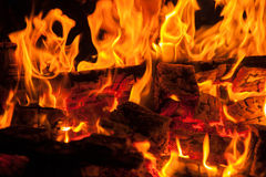 Logs and branches burning in a wood fire Royalty Free Stock Image