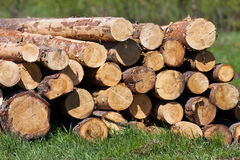 Logs for building Stock Photos