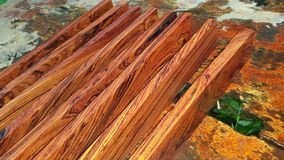 Logs of Burmese rosewood, Exotic cocobolo wood beautiful pattern For Crafts stock photo