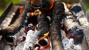Logs burn with a bright flame stock footage