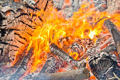 Logs burning Royalty Free Stock Photo