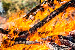 Logs burning and fire Royalty Free Stock Image