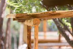 Logs on the canopy Royalty Free Stock Photos