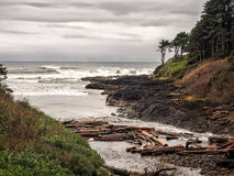 Logs clog a small inlet on a rugged coast Stock Photos