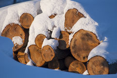 Logs covered in snow. Wintertime photo of a snow covered logs Stock Images