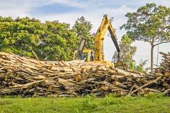 Logs de levantamento da máquina pesada - usados para o desflorestamento no esclarecimento/máquina escavadora Foto de Stock
