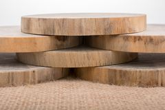 Logs de madeira cortados em partes finas redondas Imagens de Stock