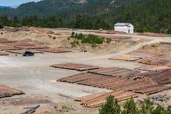 Logs de madeira de madeiras de pinho na floresta e em uma casa branca distante Montanhas de abertura de Pindus Fotografia de Stock Royalty Free