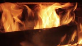 Logs de madeira que queimam-se em uma chaminé video estoque