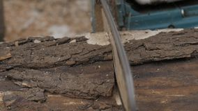 Logs do sawing do homem pela serra de cadeia Movimento lento filme