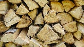 Logs do vidoeiro Imagem de Stock