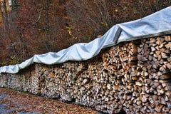 Logs drying. Cut logs drying under a blue plastic sheet Stock Photo