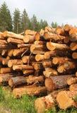 Logs empilhados da madeira serrada foto de stock royalty free