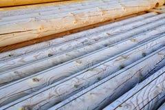 Logs en bois Photographie stock libre de droits