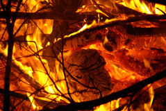 Logs on fire Stock Photography