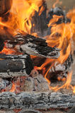 Logs in the fire Stock Image