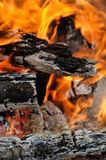 Logs in the fire Stock Images