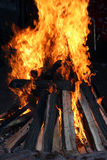 Log in flame Royalty Free Stock Photo