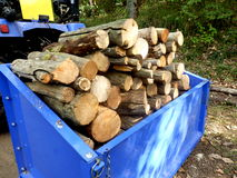Logs for the fire Stock Photography
