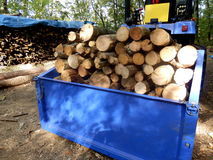 Logs for the fire Royalty Free Stock Images