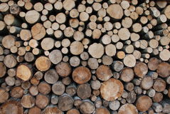 Logs of fire wood Royalty Free Stock Images