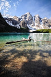 Logs floating on Moraine Lake Royalty Free Stock Images