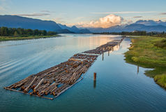Logs Floating on River With Mountains Stock Photos