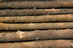 Logs Royalty Free Stock Image