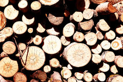 Logs for heating Stock Photo