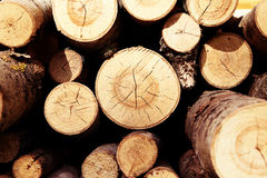 Logs for heating Royalty Free Stock Image