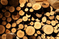Logs for heating Royalty Free Stock Photography