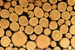 Logs for heating Stock Image