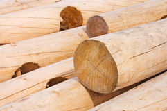 Logs for house building Royalty Free Stock Photos