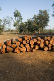 Logs, India Royalty Free Stock Images