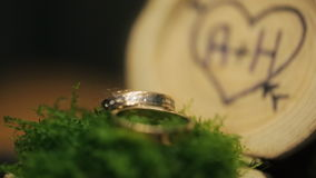Logs with initials of lovers in heart like wedding decor. In front of us there are some tree trunks. Middle of each slice is recessed inward. On one of it stock footage