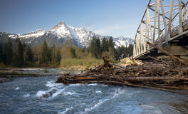 Logs jam up under the bridge on the Sauk. River Stock Image