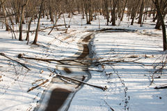 Logs lie athwart a  brook in winter forest Royalty Free Stock Images