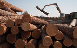 Logs and loader Stock Photos