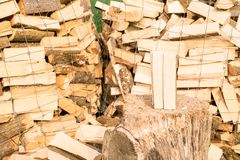 Logs on a lumber yard Royalty Free Stock Images