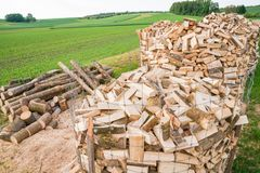 Logs on a lumber yard Stock Image