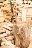 Logs on a lumber yard Royalty Free Stock Image